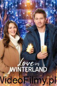 Love in Winterland ONLINE LEKTOR
