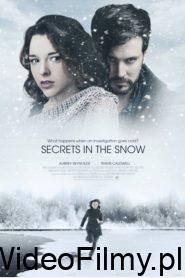 Killer Secrets in the Snow ONLINE LEKTOR