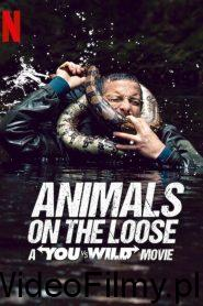 Animals on the Loose: A You vs. Wild Interactive Movie ONLINE LEKTOR